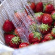 Step By Step on How to Freeze Strawberries
