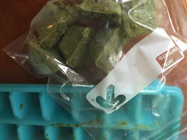 How to grow basil and pesto recipes Freezing pesto recipe