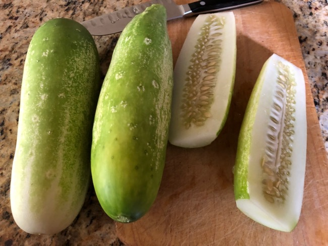 Cucumber Recipes for Overgrown Cucumbers