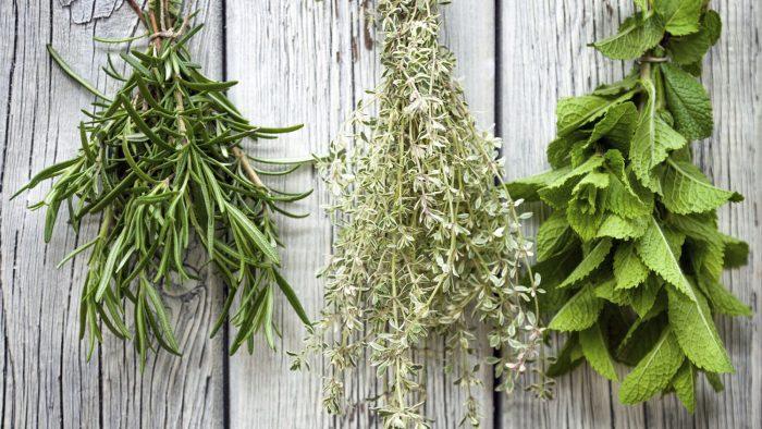 air dry herbs