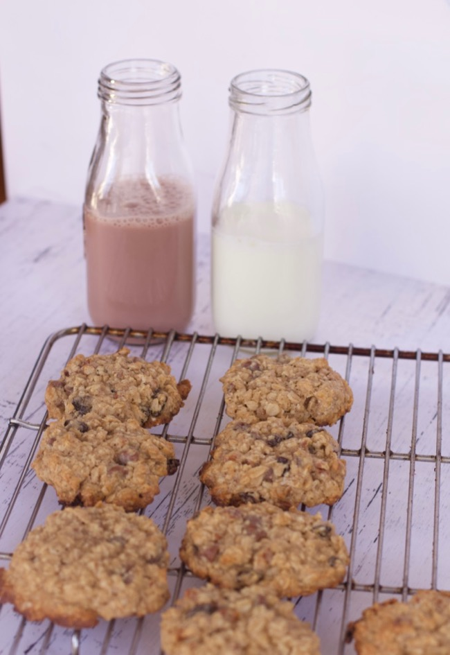 easy Oatmeal Cookies Recipe
