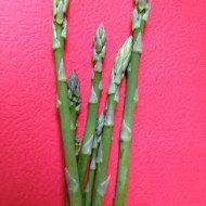 Quick TIp — Storing Asparagas