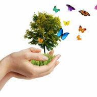 Making Crafts from Recycled Materials – Earth Day Crafts
