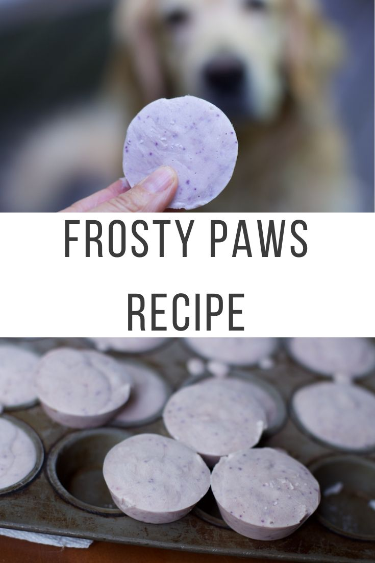 Frosty Paws Recipe
