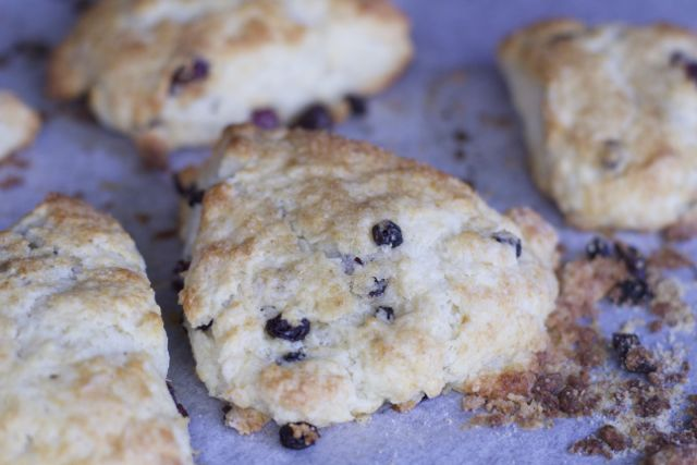 Mother's Day brunch isn't complete unless you have made our delicious Cranberry Scones Recipe! So light, fluffy, and full of flavor, this recipe is perfect!