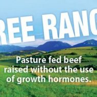 Health benefits of grass fed beef and free range meat varieties–Guest Post