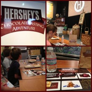 Chocolate world tasting adventure