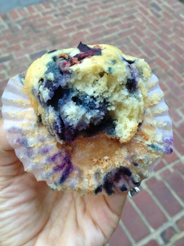 Blueberry Muffins- Make ahead Muffin Batter recipe