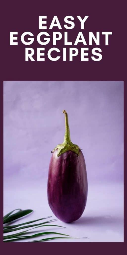 recipes using eggplant