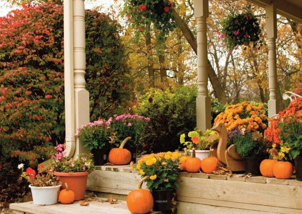 Home Fall Decorating Ideas:  Be Inspired by Nature