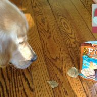 Safe Dog Treats made in the USA and ZUKE PETS #Giveaway