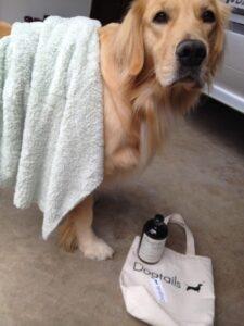 dogtail dog shampoo