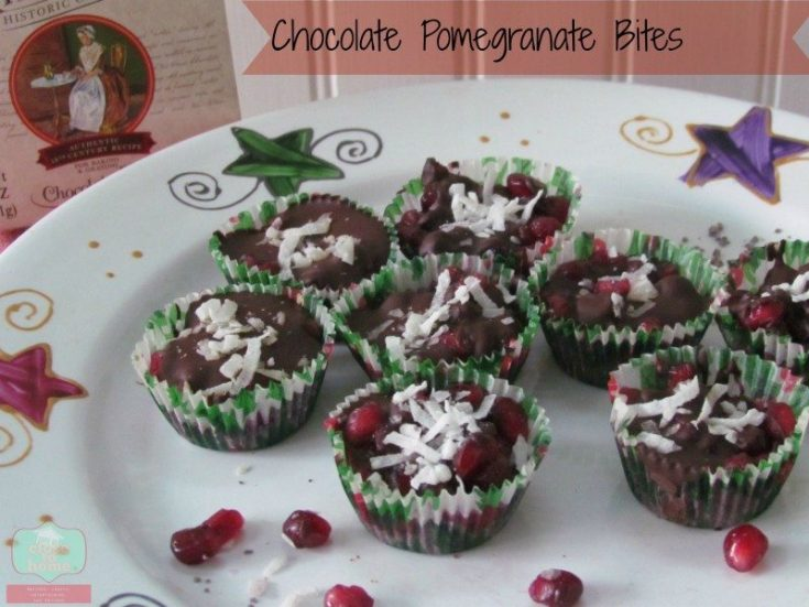 Amazing Chocolate Pomegranate Coconut Bites Recipe