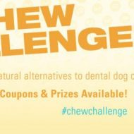 Important Facts about Dog Dental Health- #ChewChallenge