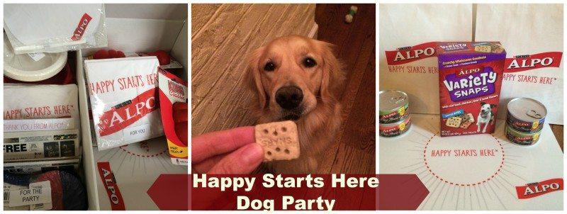 #Happystartshere dog party