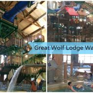 A Tweens visit to Great Wolf Lodge