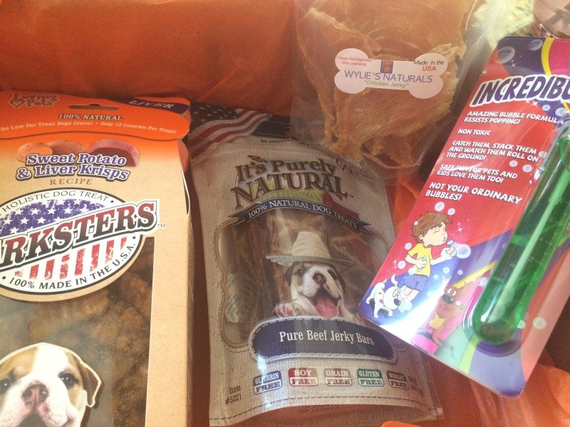 dog-subscription-box