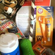 Have a new puppy?  Check out Pup Box Subscription Box