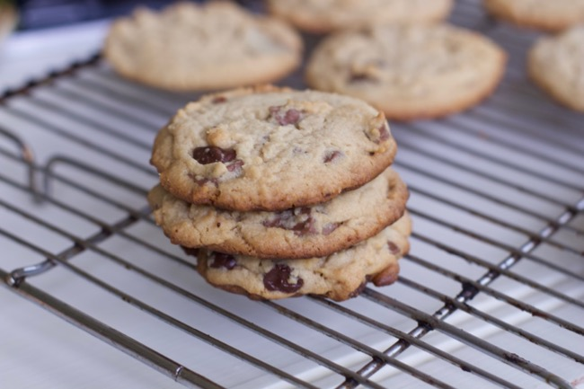 Chocolate Chunk Peanut butter cookie