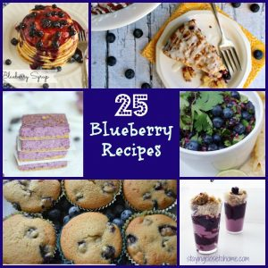 25 blueberry recipes