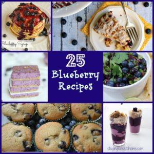 25 blueberry recipes