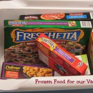 The Best Frozen Foods to take on Vacation