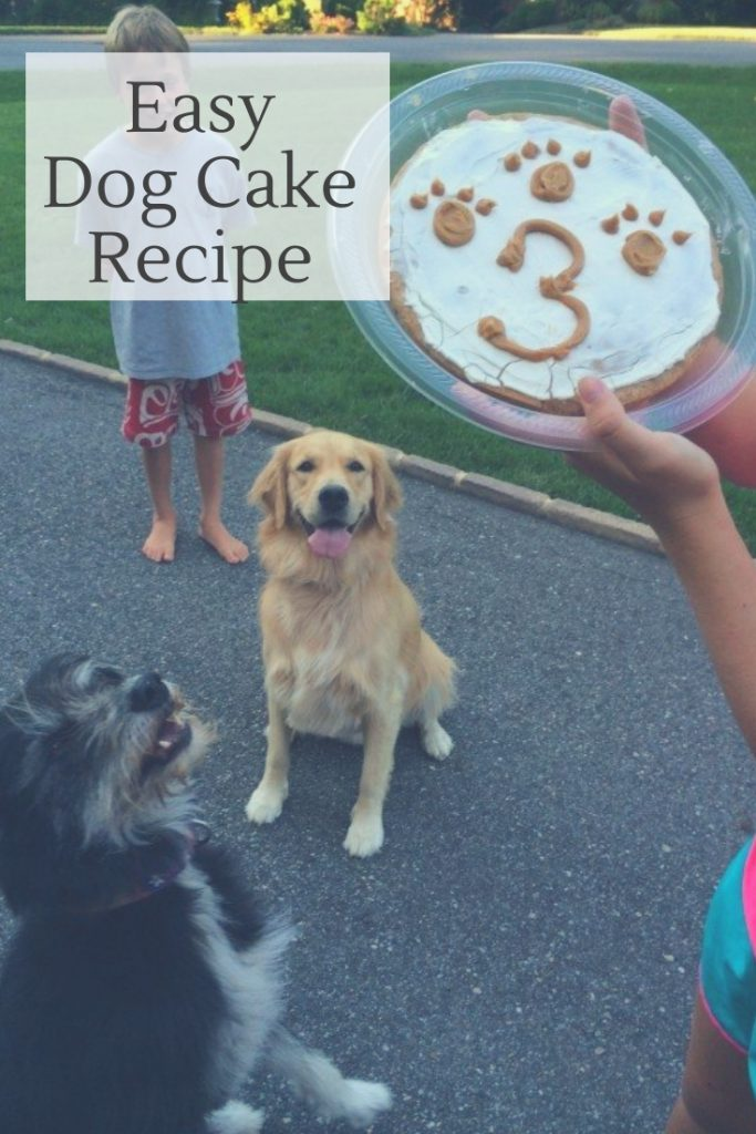 easy dog cake recipe