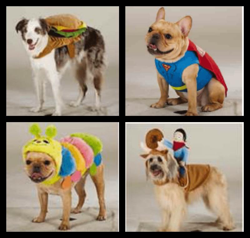 halloween-costumes-petsmart