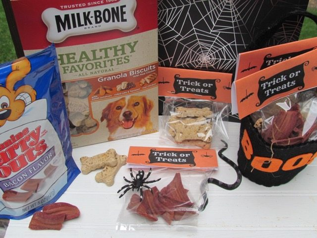 DIY Halloween Pet Treat Bags