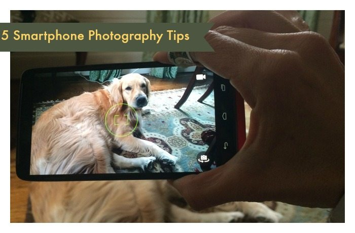 5 Smartphone Photography Tips