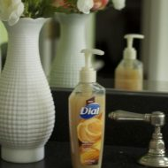 Dial Sugar Cane Husk Hand Soap #Giveaweay