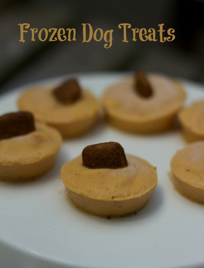 Calories In Dog Food And Treats