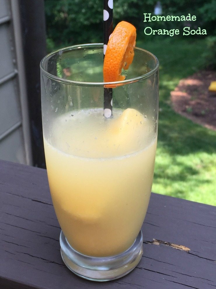 Homemade Orange Soda and Benefits of Drinking 100% Florida Orange Juice