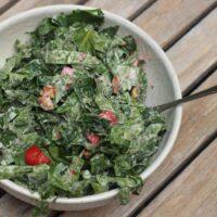 Strawberry Walnut Kale Salad