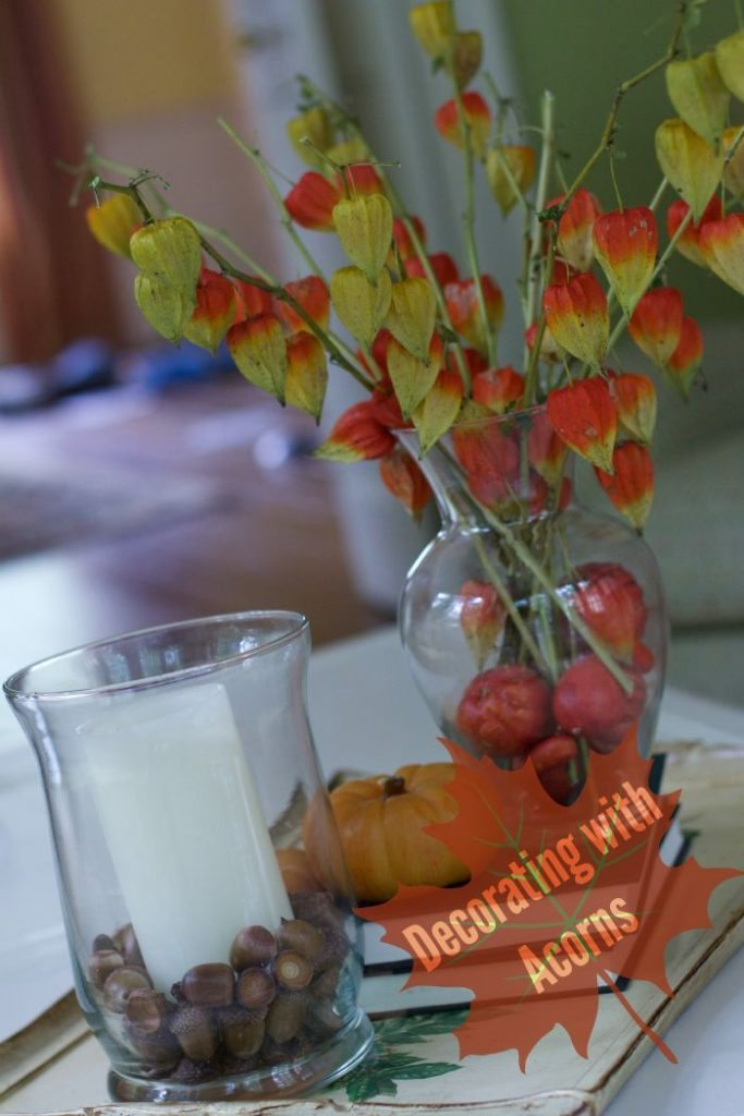 decorating with acorns