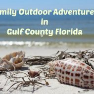 Family Outdoor Adventures in Gulf County Florida