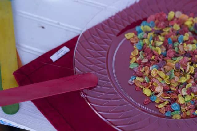plastic plate craft 1
