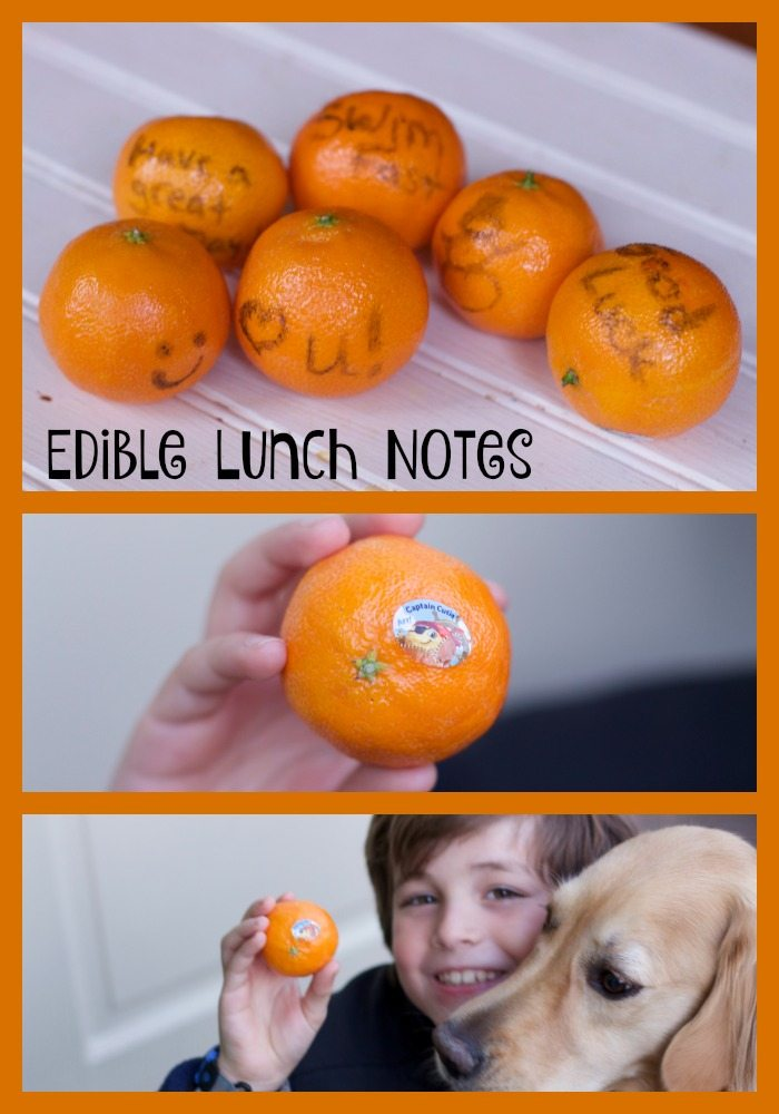 edible lunch notes
