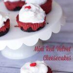 mini red velvet cheesecakes 1