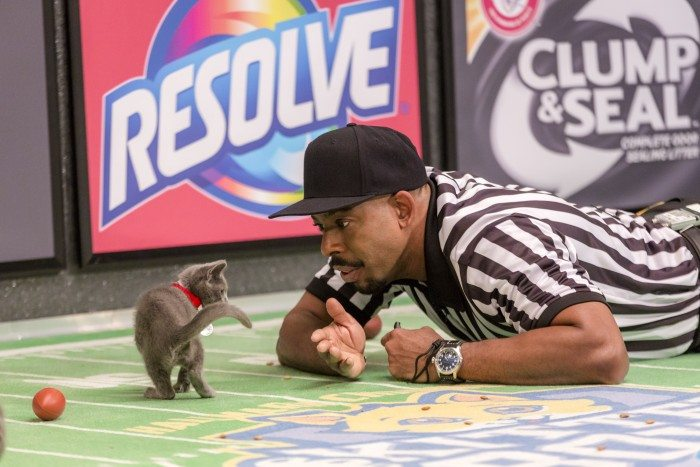 """Kitten Bowl"" is a feline catstravaganza presented in association with North Shore Animal League America (the nation's largest no-kill shelter and animal adoption organization) and Last Hope Animal Rescue and Rehabilitation. Hosted by Beth Stern, TV personality and national spokesperson for North Shore Animal League America, ""Kitten Bowl"" is a star-studded lineup that includes legendary New York Yankees radio voice John Sterling and award-winning reporter, sports analyst and commentator Mary Carillo as ""Kitten Bowl's"" official play-by-play announcer, and Boomer Esiason as the Feline Football League's (FFL) Commissioner. Photo: Chuck Nice Credit: Copyright 2015 Crown Media United States, LLC/Photographer: Marc Lemoine"
