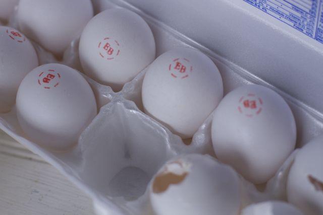 Egglands Best eggs