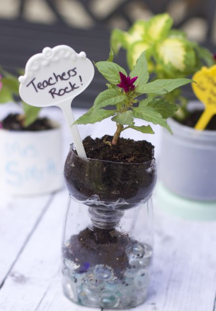 teacher appreciation gifts recycled planters