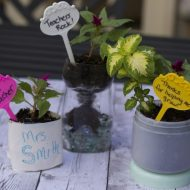 Repurpose a Milk or OJ carton into a planter–Earth Day Idea