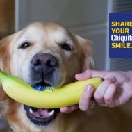 Share your Chiquita Smile Contest