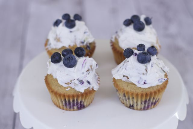 Homemade dog cupcakes made with blueberries, pupcakes recipes
