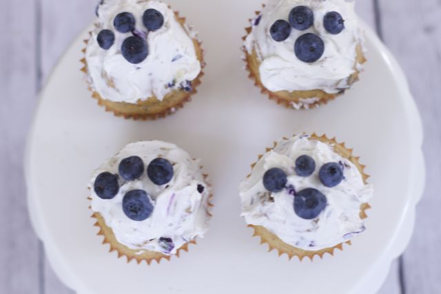 Blueberry dog cupcake recipe for any dog birthday