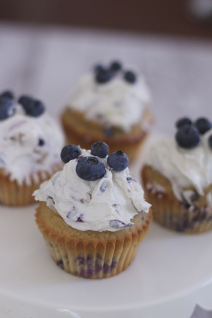 Simple Homemade Dog Cupcake Recipe Blueberry Pupcakes
