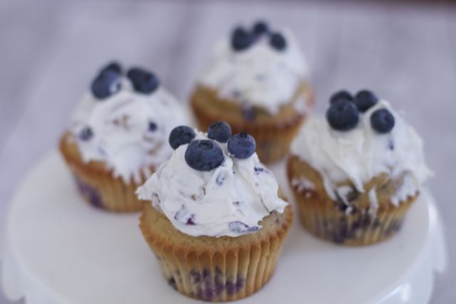 Blueberry Dog CupCakes