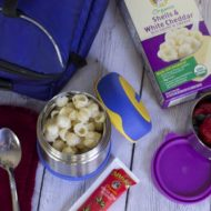 Organic Lunch Box Choices for Kids