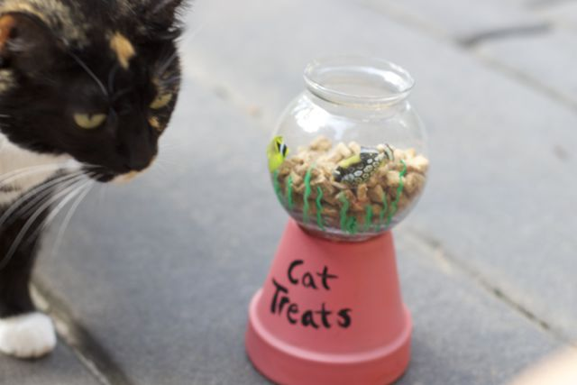 Make your favorite cat one of these easy DIY Cat Treat Holders in under 30 minutes.